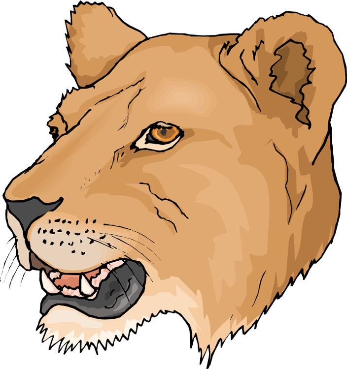 Lioness clipart #16, Download drawings