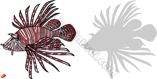 Lionfish clipart #6, Download drawings