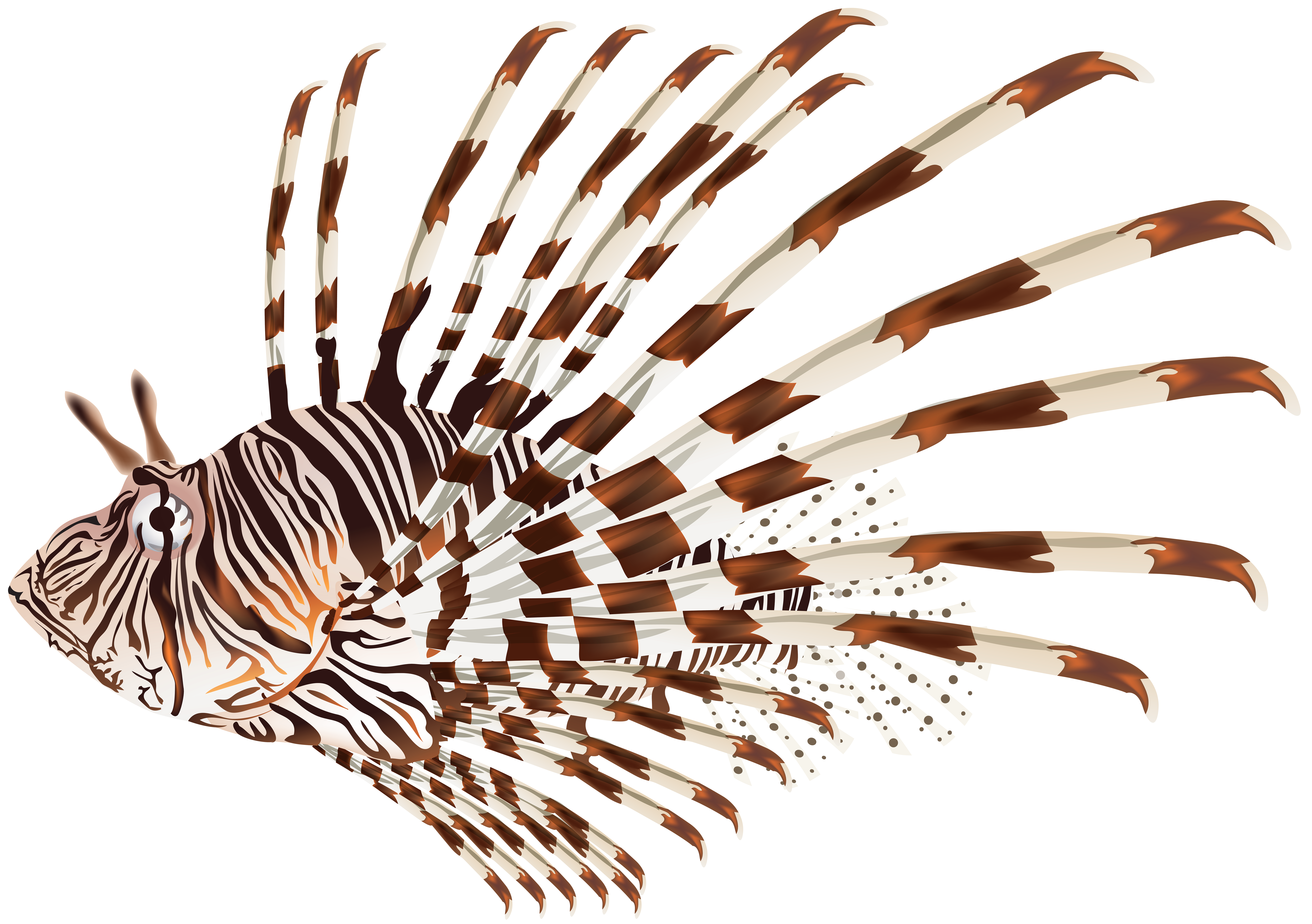 Lionfish clipart #4, Download drawings