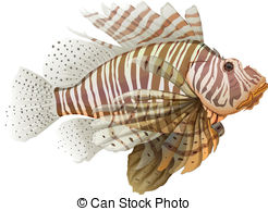 Lionfish clipart #16, Download drawings