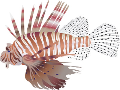 Lionfish svg #20, Download drawings