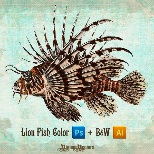 Lionfish svg #5, Download drawings