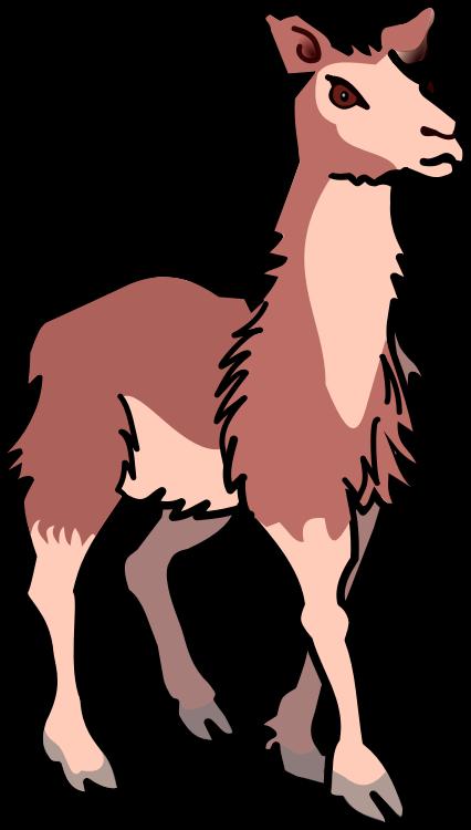 Llama clipart #14, Download drawings
