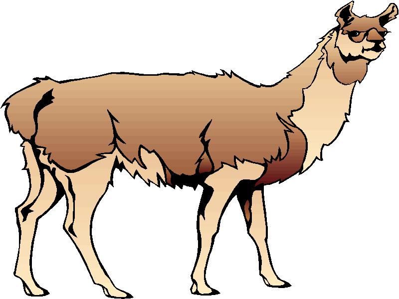 Llama clipart #8, Download drawings