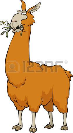 Llama clipart #10, Download drawings