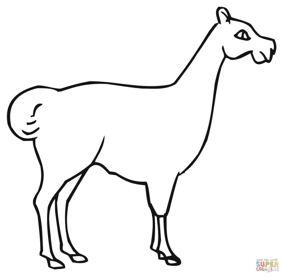 Llama coloring #13, Download drawings