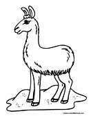 Llama coloring #3, Download drawings