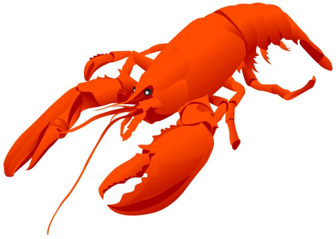 Lobster clipart #10, Download drawings