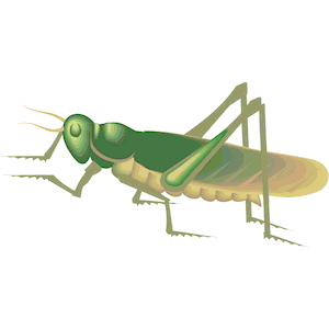 Locust svg #2, Download drawings