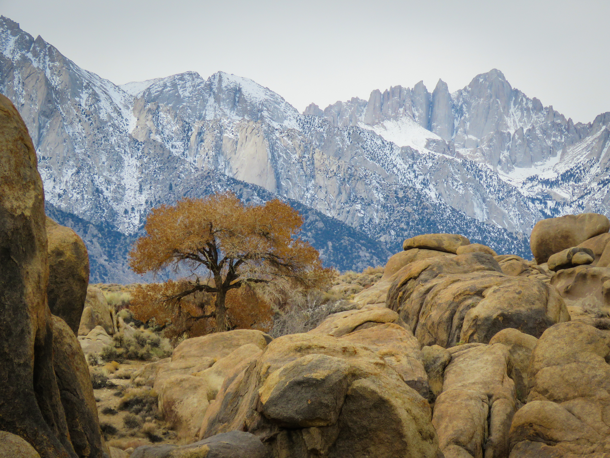 Lone Pine Peak coloring #7, Download drawings