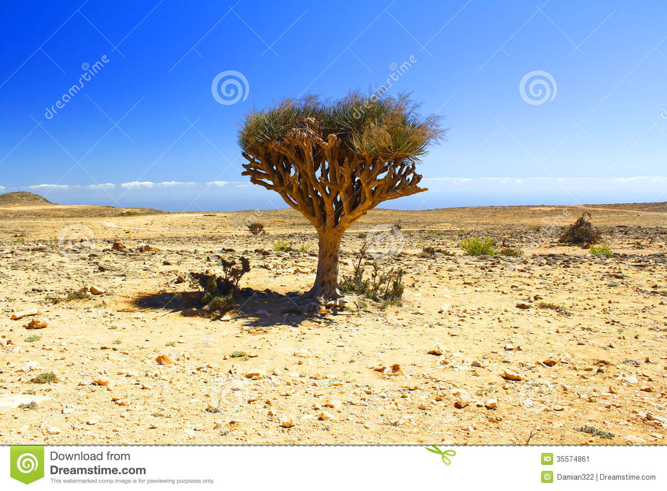 Lonely Tree clipart #19, Download drawings