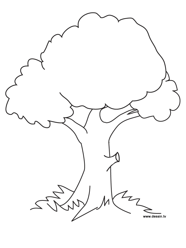 Lonely Tree coloring #3, Download drawings