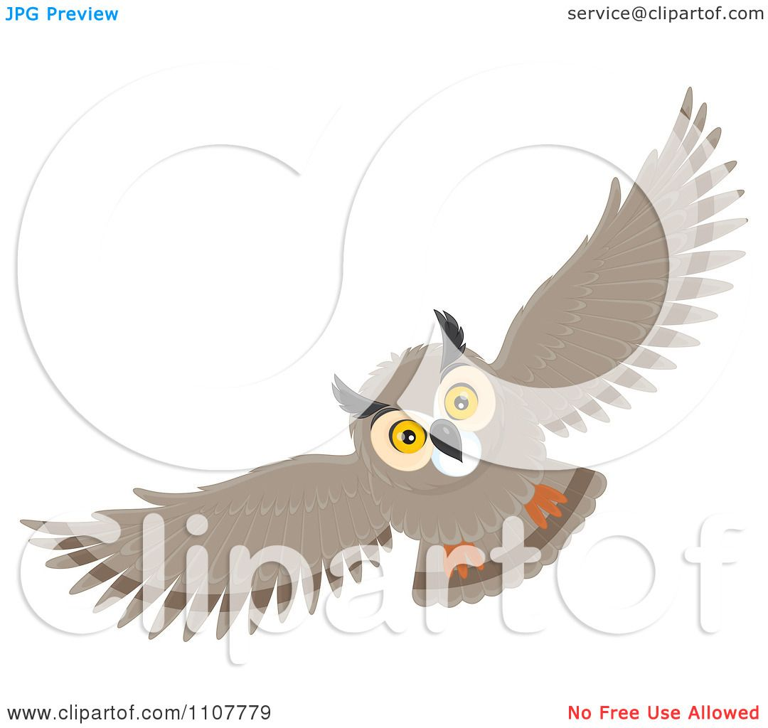 Long Eared Owl clipart #10, Download drawings