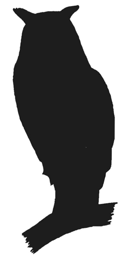Long Eared Owl clipart #3, Download drawings