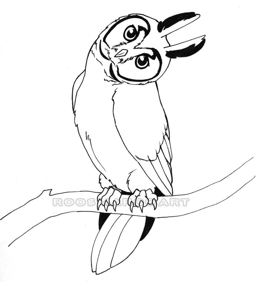 Long Eared Owl coloring #4, Download drawings