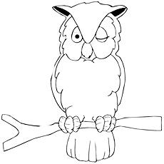 Short-eared Owl coloring #2, Download drawings