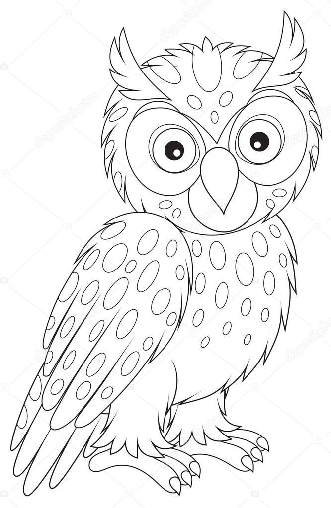 Long Eared Owl coloring #12, Download drawings