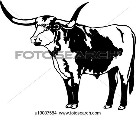 Longhorn Cattle clipart #17, Download drawings