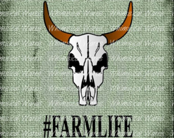 Longhorn Cattle svg #8, Download drawings