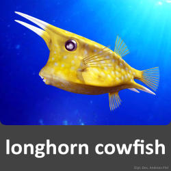 Longhorn Cowfish svg #16, Download drawings