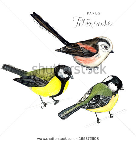 Long-tailed Tit clipart #4, Download drawings