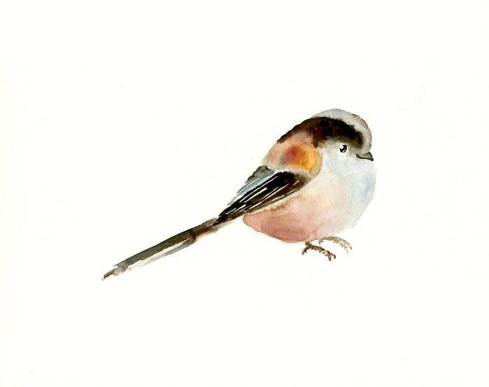Long-tailed Tit svg #18, Download drawings