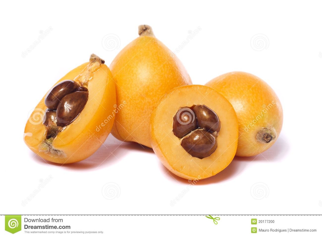 Loquat Berries clipart #12, Download drawings