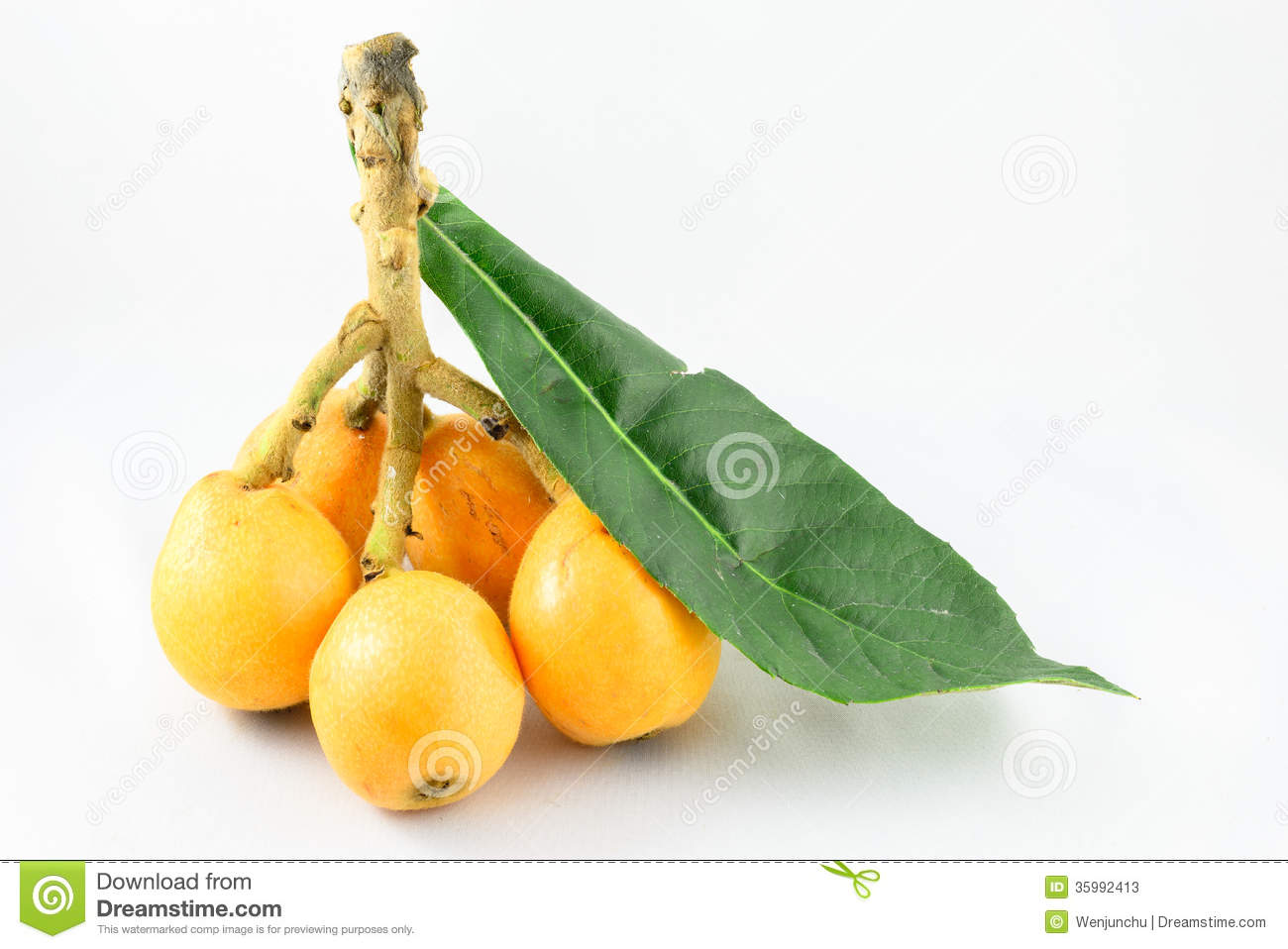 Loquat Berries clipart #20, Download drawings