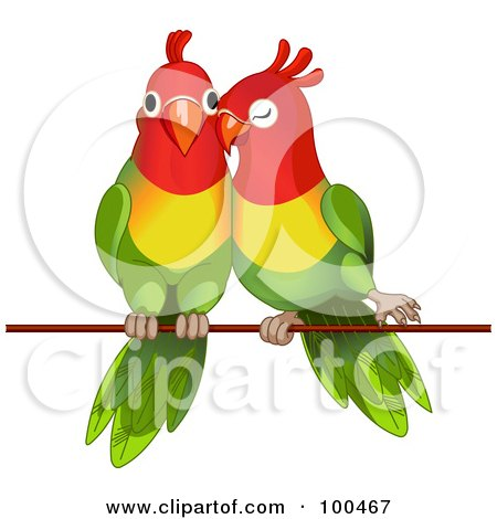 Lorikeet clipart #7, Download drawings