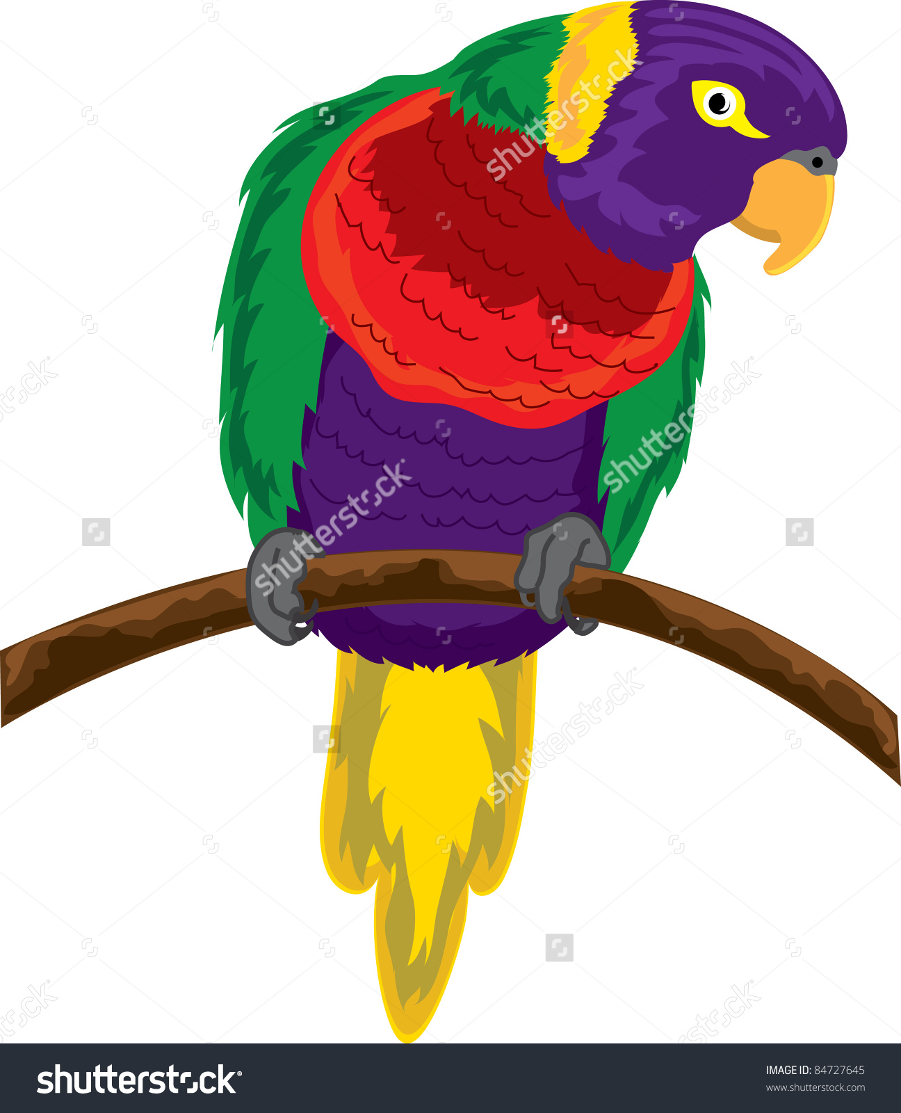 Lorikeet clipart #15, Download drawings
