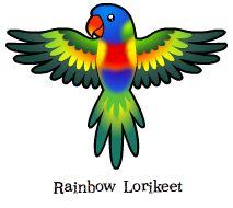 Lorikeets clipart #14, Download drawings
