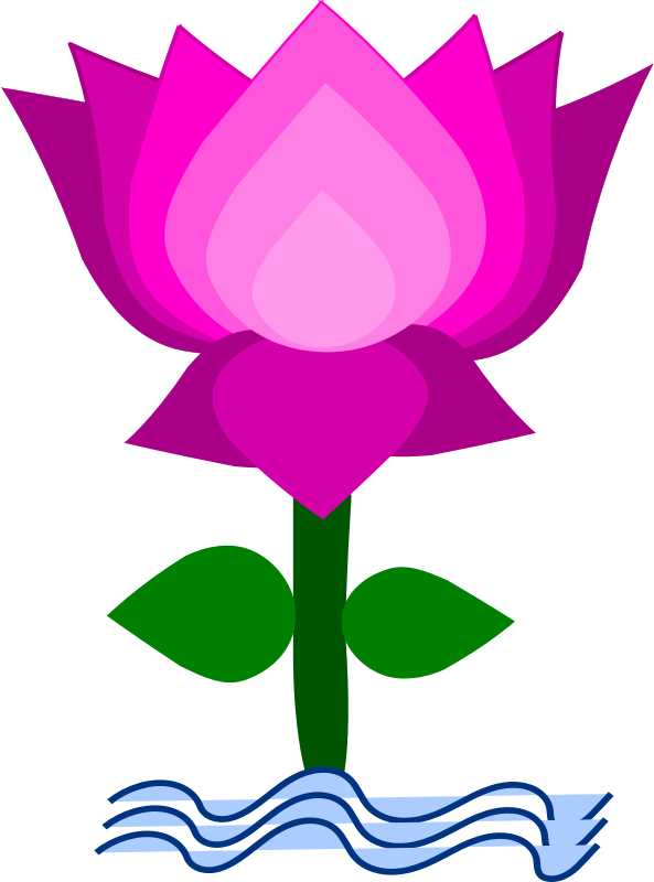 Lotus clipart #1, Download drawings
