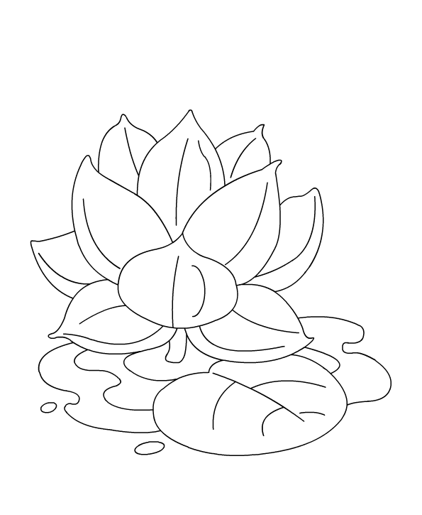 Lotus coloring #9, Download drawings