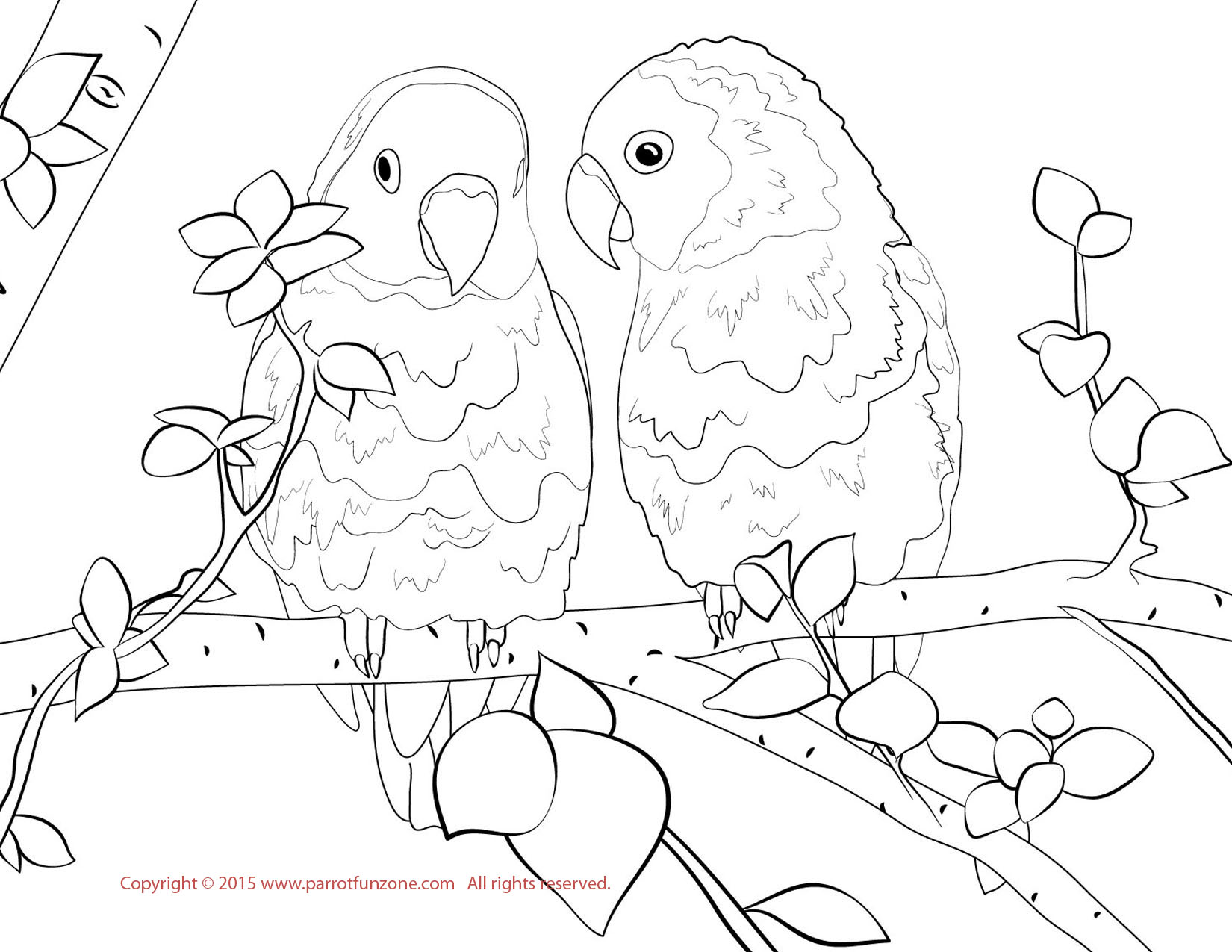 Lovebird coloring #2, Download drawings