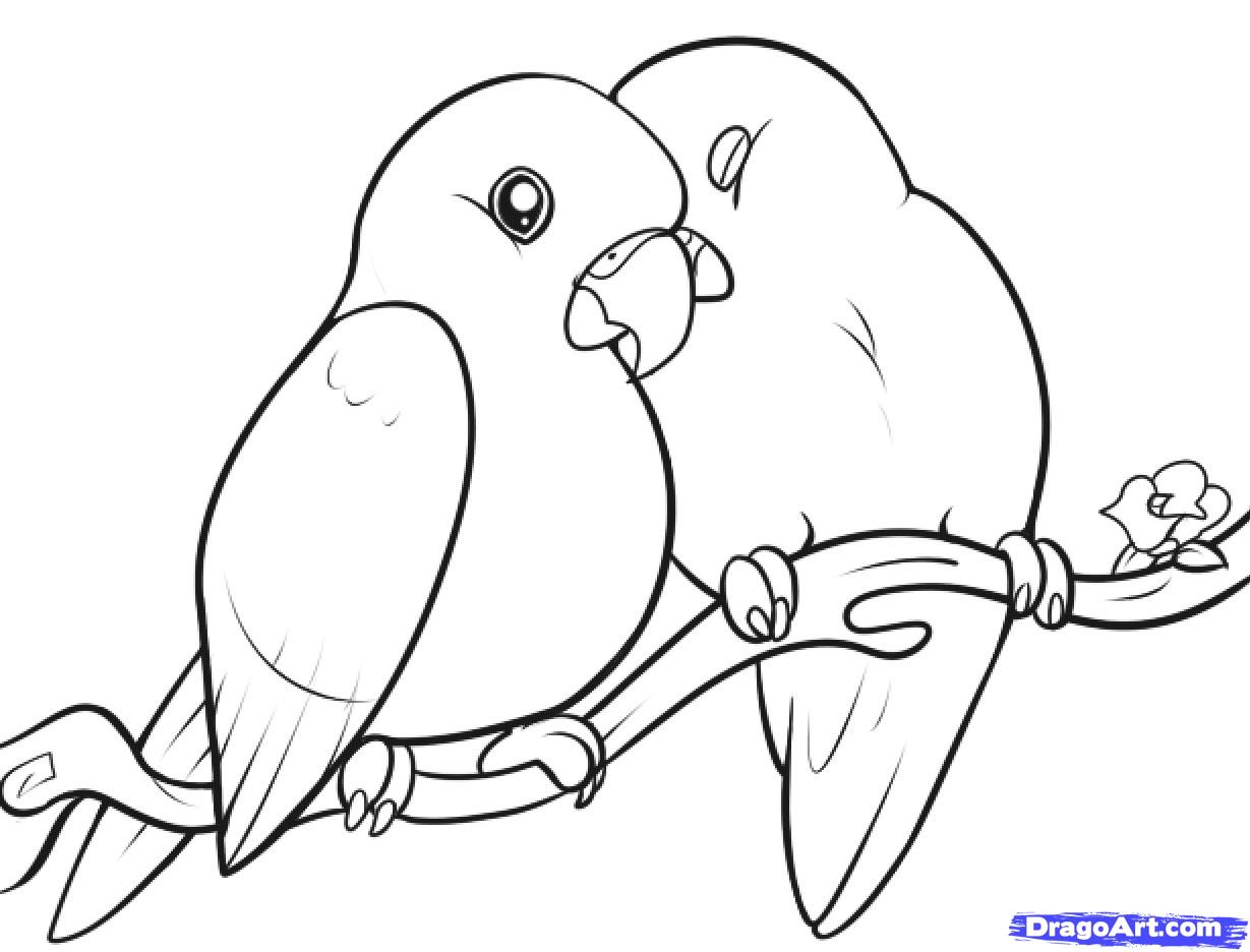 Lovebird coloring #16, Download drawings