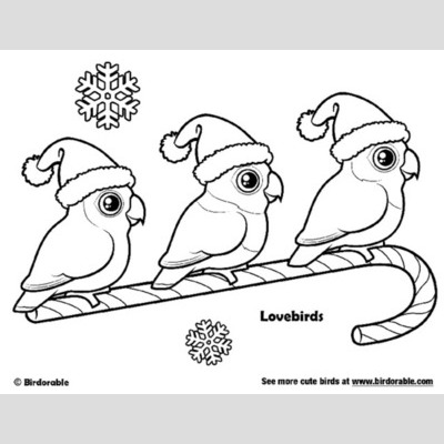 Lovebird coloring #8, Download drawings