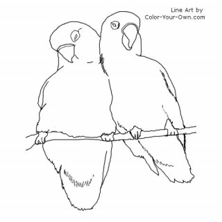 Lovebird coloring #19, Download drawings