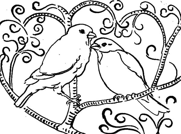 Lovebird coloring #7, Download drawings
