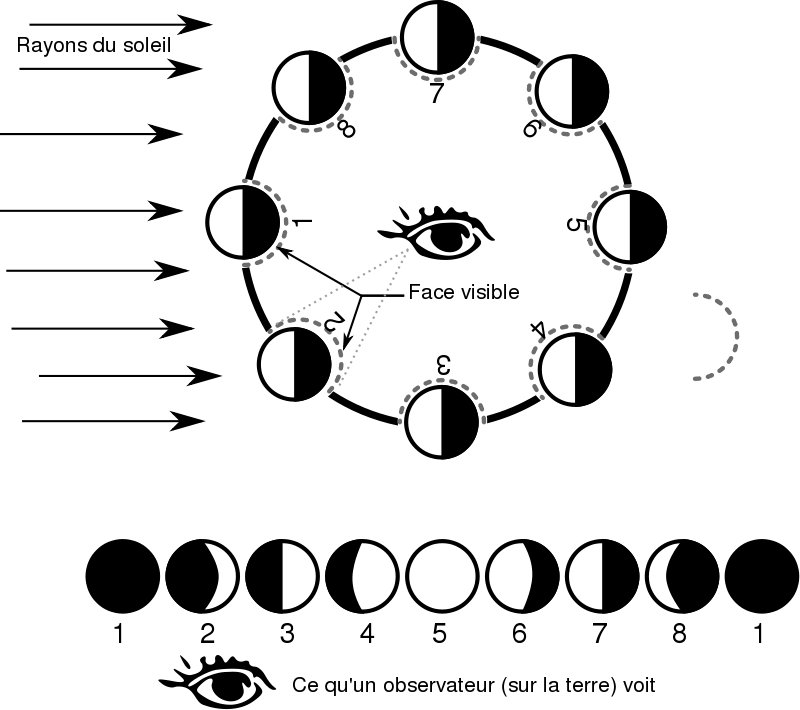 Lune clipart #1, Download drawings