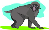 Macaque clipart #10, Download drawings