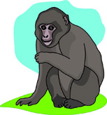 Macaque clipart #18, Download drawings