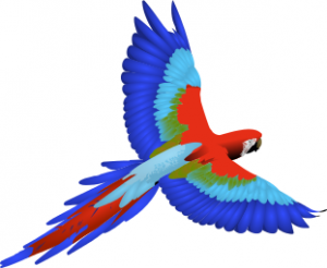 Macaw clipart #2, Download drawings