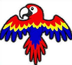 Macaw clipart #11, Download drawings