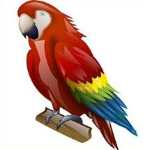Macaw clipart #3, Download drawings