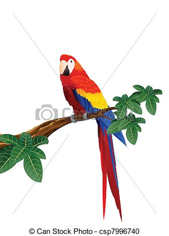 Macaw clipart #5, Download drawings