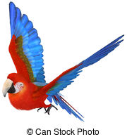 Macaw clipart #8, Download drawings
