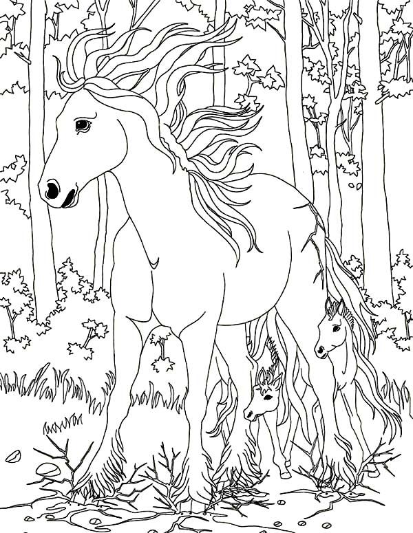 Magical coloring #16, Download drawings
