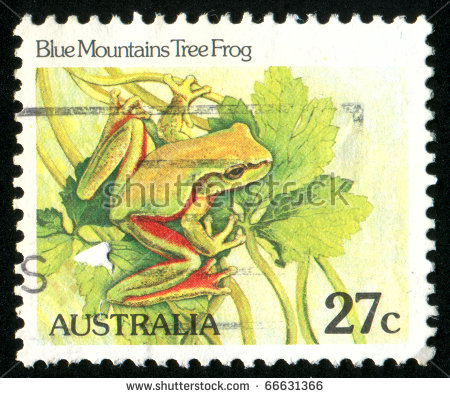 Magnificent Tree Frog clipart #1, Download drawings