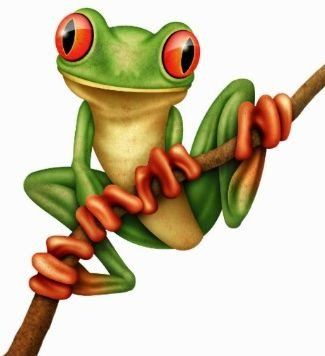 Magnificent Tree Frog clipart #10, Download drawings