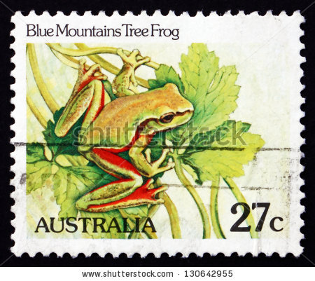 Magnificent Tree Frog clipart #3, Download drawings